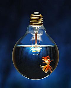 creativity-scenario-larp